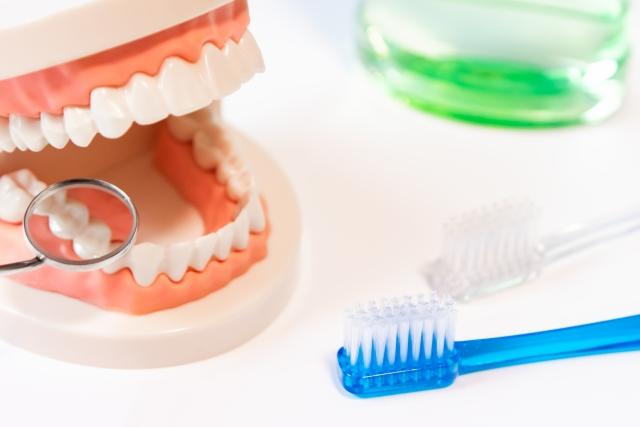 きれいな歯のイメージ